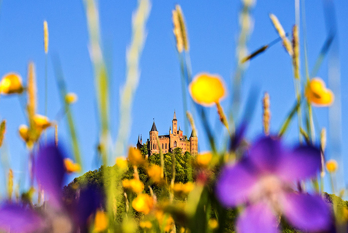 Startpage Burg Hohenzollern En